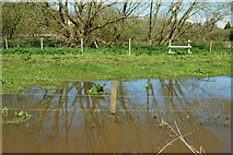 SZ5885 : Floods Beside the Cycle Route, Alverstone, Isle of Wight by Peter Trimming