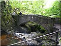 NY3920 : Stone footbridge below Aira Force by Rose and Trev Clough