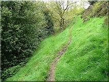SE0421 : Sowerby Bridge Footpath 136 by Humphrey Bolton