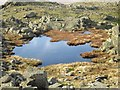 NY2404 : Tarn on Long Top by Graham Robson