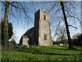 TM1085 : St. Mary: the parish church of Winfarthing by Robert Edwards