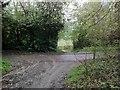 TQ1551 : Denbies Drive in Ashcombe Wood by Hugh Craddock
