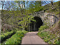 SD8110 : Tunnel Under the East Lancashire Railway by David Dixon