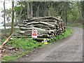 NT1679 : Log pile at Dalmeny by M J Richardson
