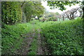 SO2852 : Herefordshire Trail near Apostles Farm by Philip Halling
