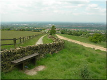 SJ9693 : Werneth Low Country Park by John Topping