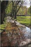 SX9164 : Path, Upton Park, Torquay by Derek Harper