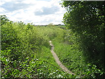 SE3522 : Path into the Stanley Ferry Flashes Nature Reserve by Jonathan Thacker
