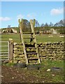 SE1761 : Stile on Nidderdale Way by Derek Harper
