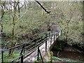NZ1062 : Footbridge over Stanley Burn by Andrew Curtis