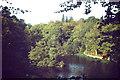 TQ3331 : Wakehurst Park, Westwood Lake by Colin Smith