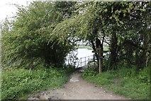 SU2598 : Bridge to the Thames Path by Bill Nicholls