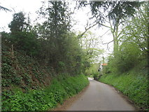SK7060 : The road into Maplebeck by Jonathan Thacker