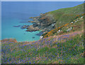 SW4740 : Coast Path View Near St Ives by Roy Hughes