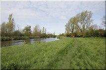 SU2598 : Walking by the Thames by Bill Nicholls