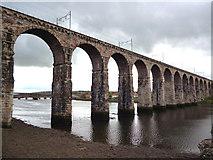 NT9953 : Berwick-upon-Tweed:  The Royal Border Bridge by Dr Neil Clifton