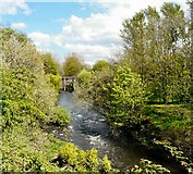 SJ9398 : River Tame by Gerald England