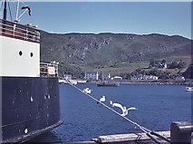 NM6797 : Mallaig Harbour by Nigel Brown