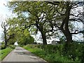 SJ7375 : Pinfold Lane, near Wood's Tenement by Christine Johnstone