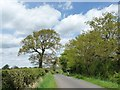 SJ7273 : Cyclist on Back Lane by Christine Johnstone