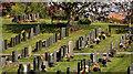 J4669 : Comber cemetery by Albert Bridge