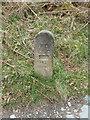 NY4018 : HT joint marker No 13 by Alexander P Kapp