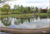 SJ6855 : Lake in Queen's Park by David P Howard