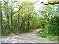 SJ7570 : Private track and public footpath to Hales Pasture by Christine Johnstone