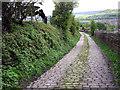 SK0197 : Arnfield Lane by Stephen Burton