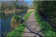 SU7251 : North Warnborough - Basingstoke Canal by Chris Talbot