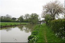 SP7645 : Towpath and bridge 60 on the Grand Union by Philip Jeffrey