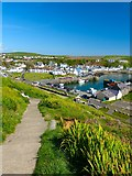 NW9954 : Path to Portpatrick by Andy Farrington