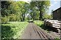 TQ0247 : A walk through the mills by Bill Nicholls