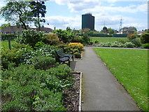 TQ2770 : Colliers Wood Recreation Ground by Marathon