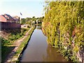 SJ9495 : Willow over the Peak Forest Canal by Gerald England