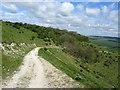 TQ3807 : Chalk Track on the South Downs Escarpment by Chris Heaton