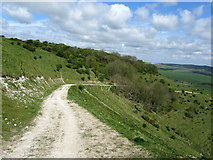 TQ3807 : Chalk Track on the South Downs Escarpment by Chris Heaton