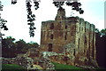 NT9047 : Norham Castle Keep by Colin Smith