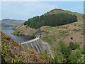 SN9187 : Clywedog dam and Bryn-y-tail by Andrew Hill