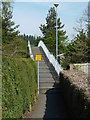SN9584 : Footbridge over the A470 to the centre of Llanidloes by Andrew Hill