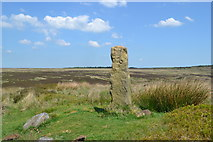 """SK2775 : """"Bas""""(Baslow?) Old guidepost on Big Moor by Neil Theasby"""