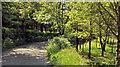 J2760 : The Legacurry Road, Ravernet near Lisburn by Albert Bridge