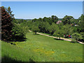 SU9722 : Petworth Park: view north from the Rotunda by Stephen Craven