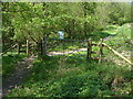SU7431 : Noar Hill nature reserve by Alan Hunt