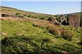 SO2527 : Ruinous farmstead in Cwm Grwyne by Philip Halling