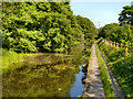 SD7605 : Manchester, Bolton and Bury Canal, Ringley by David Dixon