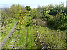 NO3700 : Remains of a railway by James Allan