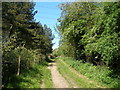 NZ3638 : Bridleway 'The Hilly' towards Thornley by John Slater