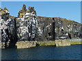 NT6598 : Isle of May sea stacks by James Allan