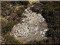 NU0031 : 'Dod Law Quarry Site a' prehistoric carving, Doddington Moor by Andrew Curtis